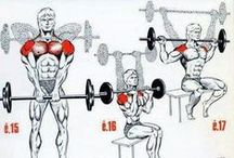Training Everyone