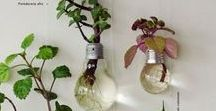 """Recycled Light Bulb Decorations / """"Resurface. Repaint. Refinish. Make something old new again!"""" Recycle your light bulbs into beautiful ornaments and home decor items!"""