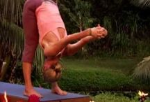 """Yoga ❤ / """" Yoga is the journey of the Self, to the Self, through the Self! """""""