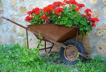 gardening / outdoor space