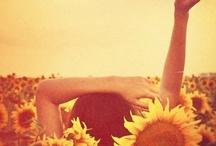 hippie ~ peace ~ love