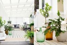 Outdoor living / Looking for a calm place in the sun? Let your backyard be your new favorite spot. Greenery, wood and a splash of color is all you need.