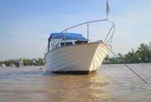 Embarcaciones y Productos Náuticos / Compra-Venta de todo tipo de Embarcaciones y productos náuticos