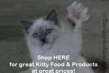 Caring For Cats / Things To Help Keep Kitty Healthy and Happy