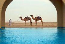 Abu Dhabi / Travelling in Abu Dhabi