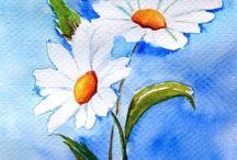 Daisies pastel oil painting watercolor tables...(( yağlı boya pastel boya ve sulu boya yapılmış papatya resimleri))))