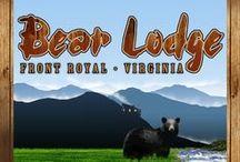 Bears / We have a cabin named Bear Lodge Cabin. I love collecting cute bear pix!
