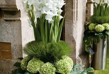 Interesting ideas with flowers and plants for the home or special occasion.