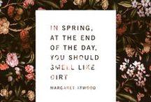 Spring/ Primavera / Stagione di rinascita