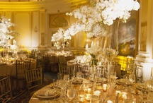 Diana Gould Weddings / Floral decor and event design in Westchester, NYC and NY Metro area for over 25 years.