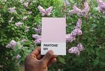 PANTONE / pantone color matching system   our favorite colorful selection
