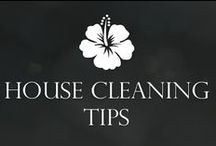 House Cleaning Tips / Naturally Fresh & Clean Home. Natural cleaning products, tips, tutorials on ways to keep your home smelling fresh, clean and beautifully organized.