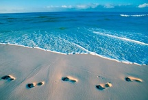 Beaches / Lovely Beaches / by Rachel Johnson