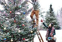 Holiday cheer / Looking forward to Christmas