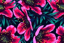 Textiles | Pattern Design / Pattern and textile design in all it's glory! / by Pencil Me In