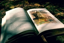 Photos of Literature / This was inspiration for my A level Photography.