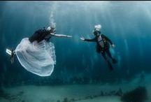 Mariage / Toutes nos plus belles idées pour le plus beau jour de votre vie !