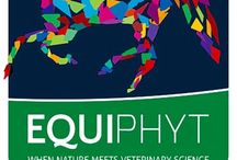 Equine Athletes / Equiphyt 100% Natural Supplement Healthy stamina, endurance and muscle power