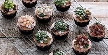 Botanical • Pastry / Cakes/ Cupcakes inspired by Botany