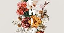 Botanical • Illustration /Paper / Illustration and designs on paper with plants, flowers and succulents #botanicalillustration