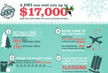Infographics & Stats / by Holiday PASS