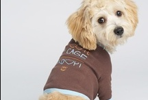 Pet Clothing / Check out our 2014 Pet's line / by My Voice