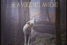 Be Their Voice / Think animals have something to say?  We do too!  You can help be their voice. / by My Voice
