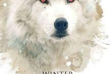 Winter is Coming ❄ / Dunn dun dun dun duuuuun dun dun dun dunnnnnnnnnn