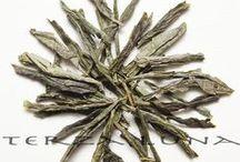Tè verdi / Per gli amanti dei sapori pieni e antichi.