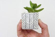 Pot+Plant