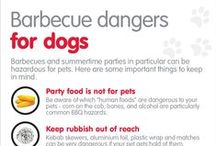 Infographics / Handy pet health info-graphics & guides to help keep your pet safe and in top shape.