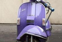 Viola - Purple - Lilla