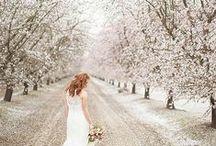 Winter Wonderland Weddings