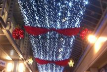 Christmas Lights / Some of the lovely, lovely lights that have illuminated my travels over the past few wintery weeks...