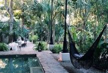Backyards & Gardens ♣ / Beautiful gardening, plants, flowers, terraces, balconies, and landscaping.