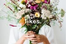 pinterest likes. / We're saying goodbye to the Like button on Pins. But don't worry, your old Likes are all right here.