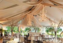 I really love weddings! / Bodas