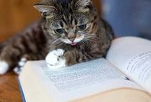Animals Read! / Sweet and funny pics of animals with books