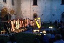 Un concerto sotto le stelle / le note delle arpe celtiche riempiono il Castello di Cusago