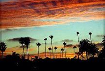 Long Beach Love / Long Beach, California