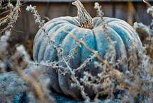 Autumn. Blue