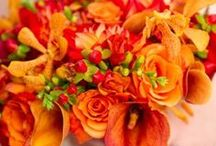 Orange Colour Themes.. / For all things orange and wedding related..