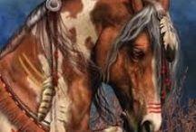 mia horses