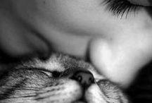 Kiss me / Beijo é beijo: dado, roubado, escondido, declarado. Melhor que beijo, só beijo com abraço!