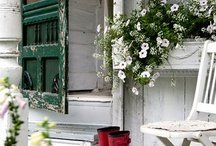"""Home Graces / """"We are lovers of beauty without extravagance.""""   ~~Thucydides"""