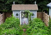 i will garden.