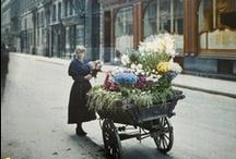 PARIS: memories of the past