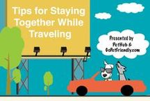 Cool Infographics by PetHub / Infographics with pet safety tips from GoPetFriendly.com , Bark and Swagger & more!