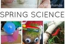 Spring Activities / Spring crafts, spring activities, spring games, spring DIY projects, and spring fun! / by Brenda D Priddy