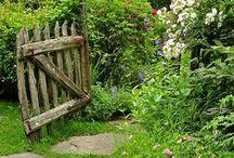 FLOWERS: my secret garden / by Anna Mancini